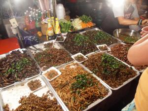 Fried bugs and crickets at Krabi night market